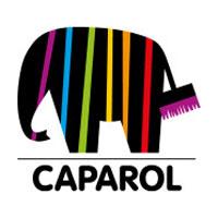 Logga Caparol